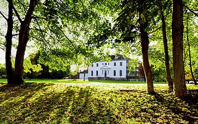 Halcyon Offices, Leatherhead, Huntingdon, Teddington, Serviced Office, Blog